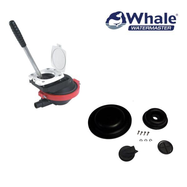 whale-compac50